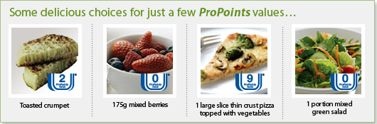 weight watchers propoints plan